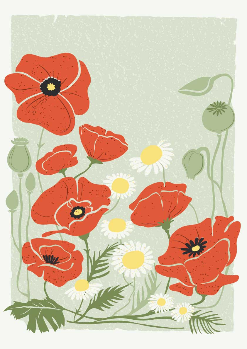 LISAKNUTSSON_POPPIES_CARD